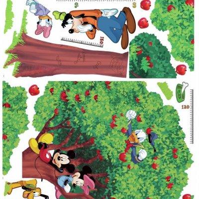 Adesivo Mickey e seus Amigos com Régua (metros)